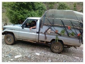 کاسبکار کُرد در مرز هورامان مریوان